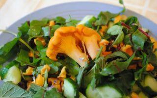 Как приготовить вкусный салат с лисичками