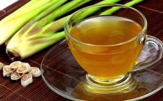 Как правильно заварить полезный лемонграсс чай?