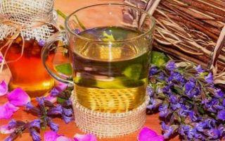 Готовим чай с шалфеем: 7 рецептов для разных случаев