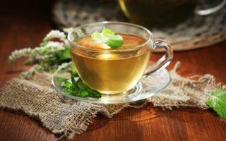 Как правильно заваривать чай с душицей