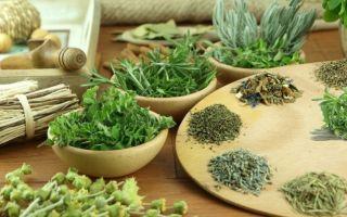 Все о французских травах и приправах: особенности, состав, применение