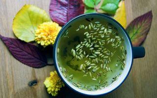 Чем полезен анисовый чай и как его заваривать
