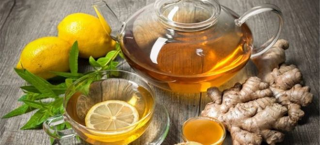 Как правильно заваривать зеленый чай с имбирем?