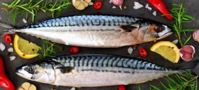 Какие специи подходят для рыбы: все о приправах к рыбе