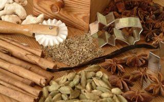 Бадьян и анис: в чем их разница?