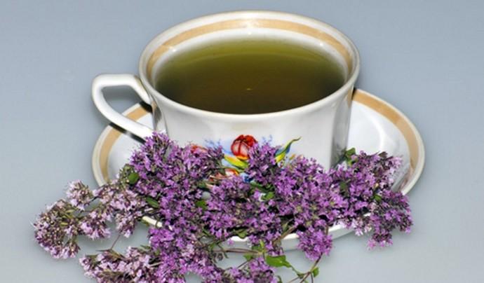 Чай с душицей лечебной