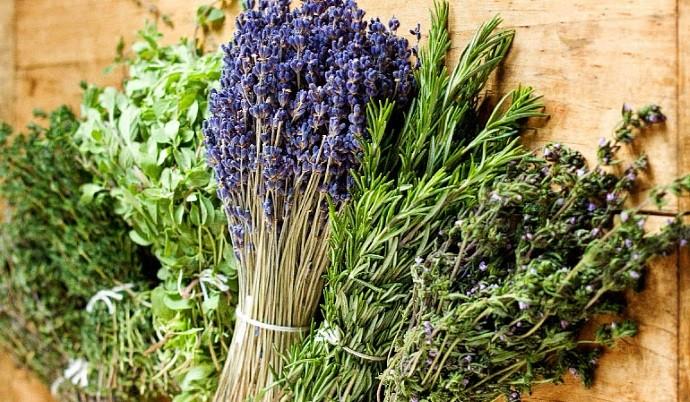 Итальянские травы специи