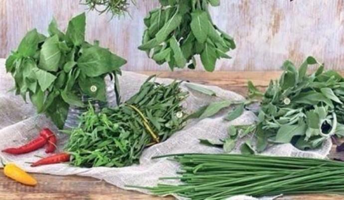 Зелень для вегеты