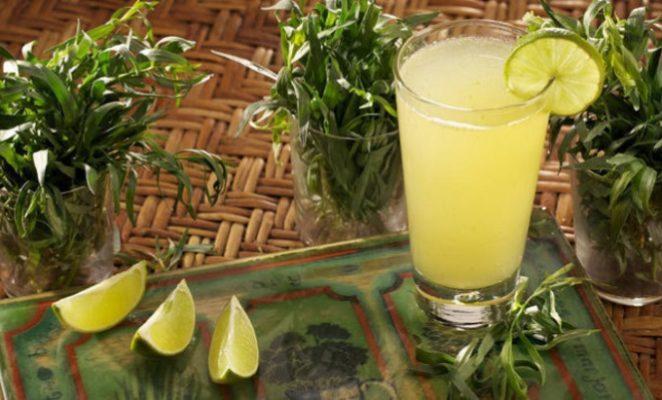 Как сделать лимонад тархун в домашних условиях?